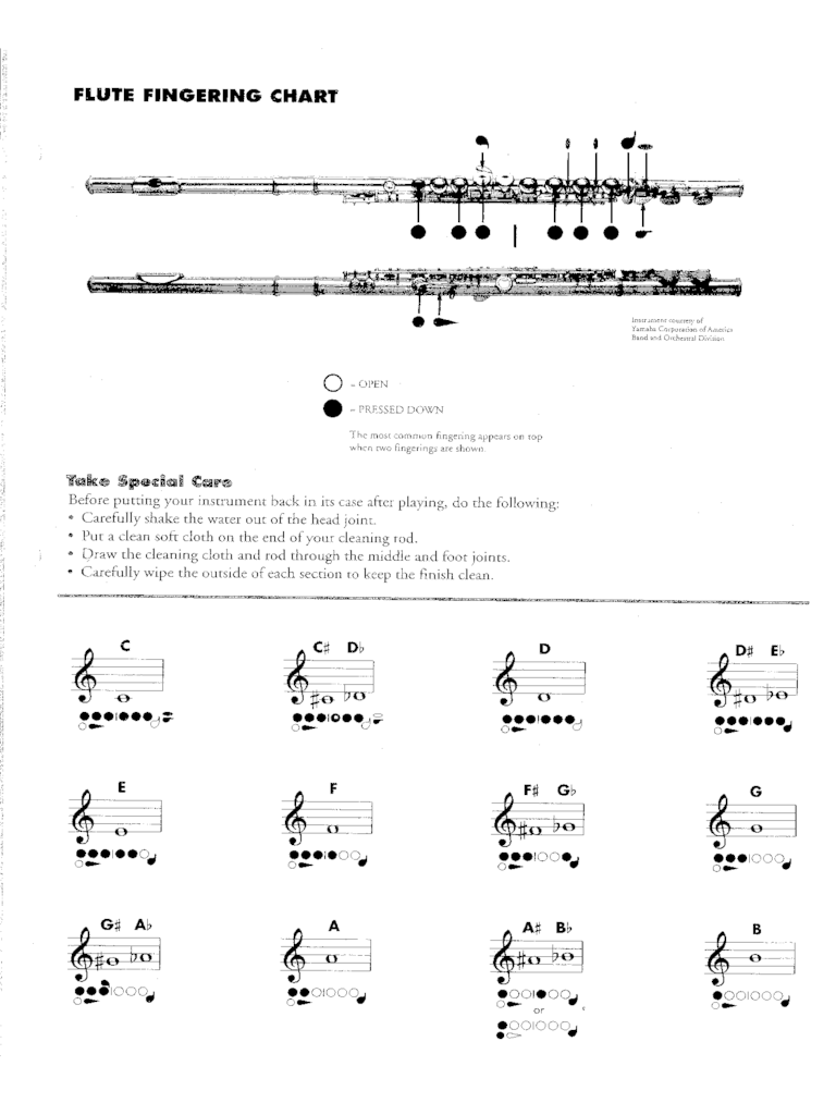 Flute Fingering Chart Template 6 Free Templates In PDF