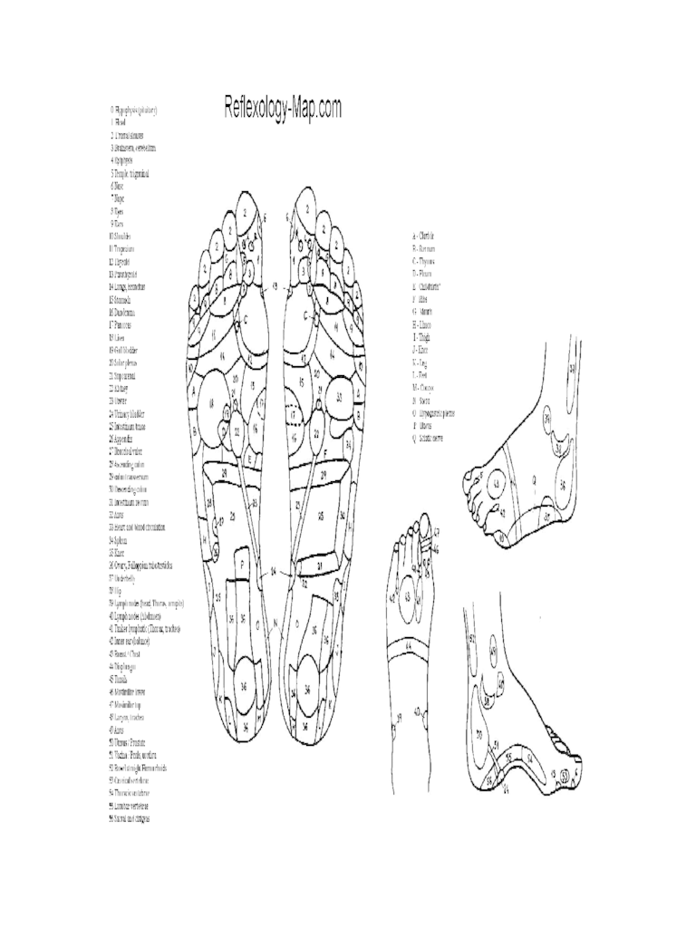 Acupressure and Massage Chart  8 Free Templates in PDF Word Excel Download