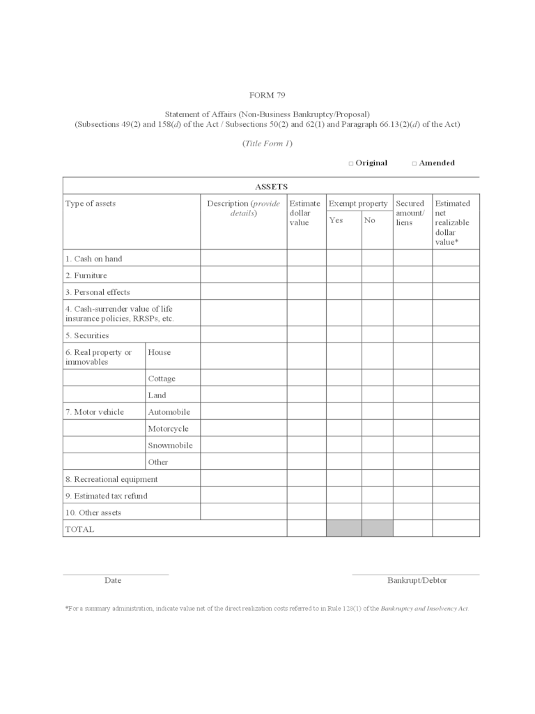 Statement of Affairs Form  2 Free Templates in PDF Word