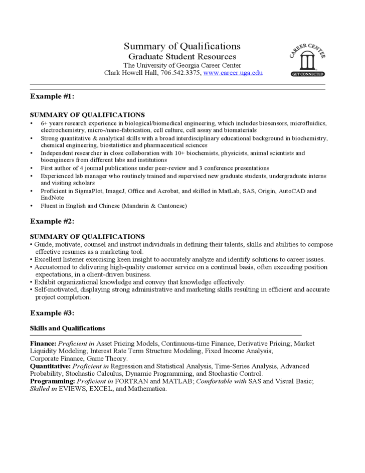 resume template summary example