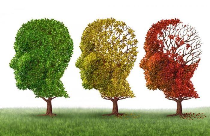 Alzheimer - Formula Medica