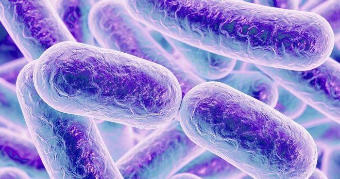 La resistencia bacteriana - Formula Medica