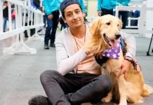 Cuidados esenciales para tu mascota - Formula Medica