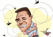 Fenomeno del niño Zika - Formula Medica