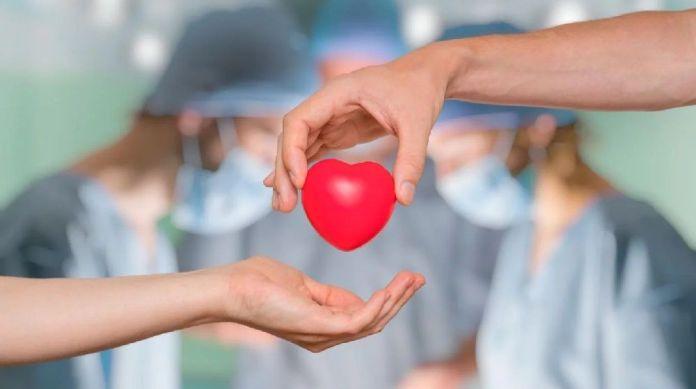 Dia nacional del trasplante - Formula Medica