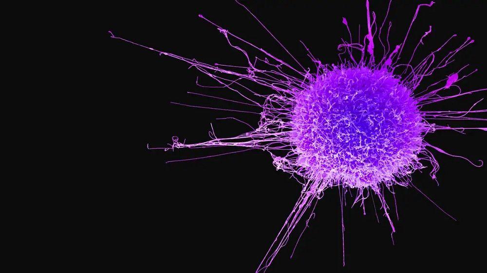 Tratamiento contra el cancer - Formula Medica