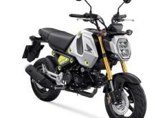 Honda MSX 125 GROM: arriverà in Europa nel 2021