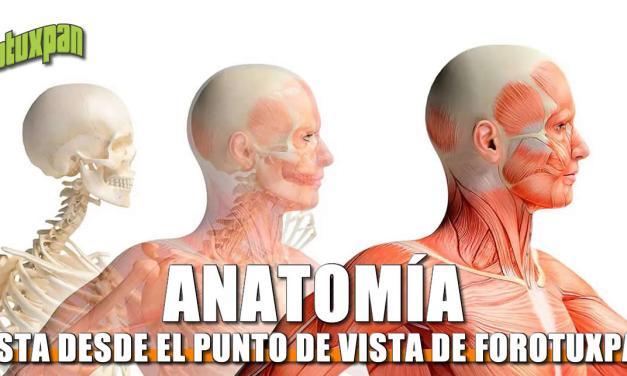 Forotuxpan le echa una mirada a la anatomía
