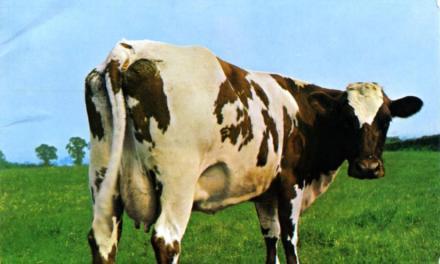 EL PODER DE LA LECHE DE VACA. (No de cabra… ¡El de cabra tiene otro efecto!)