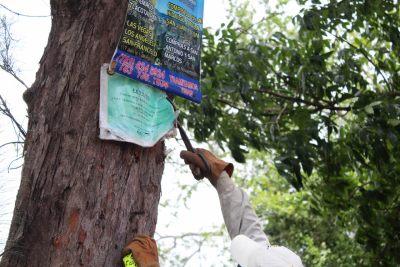 campaña de descontaminación visual (6)