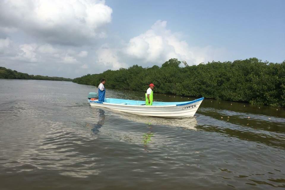 CFE pagará daños ocasionados a laguna de Tampamachoco