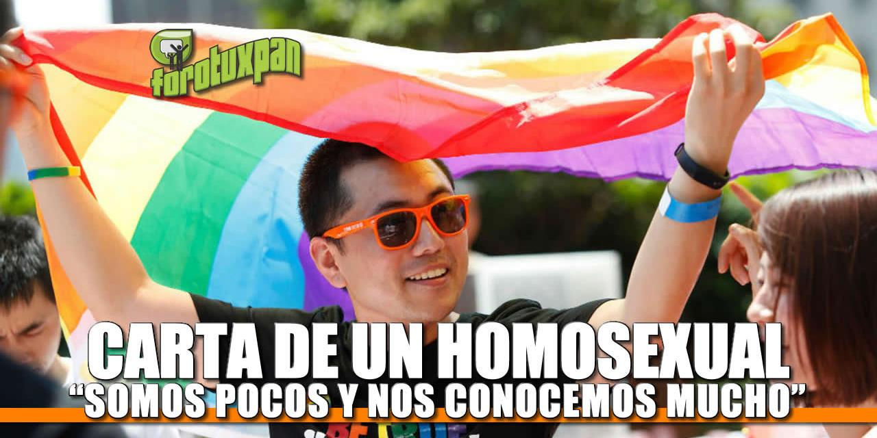 Carta de un Homosexual