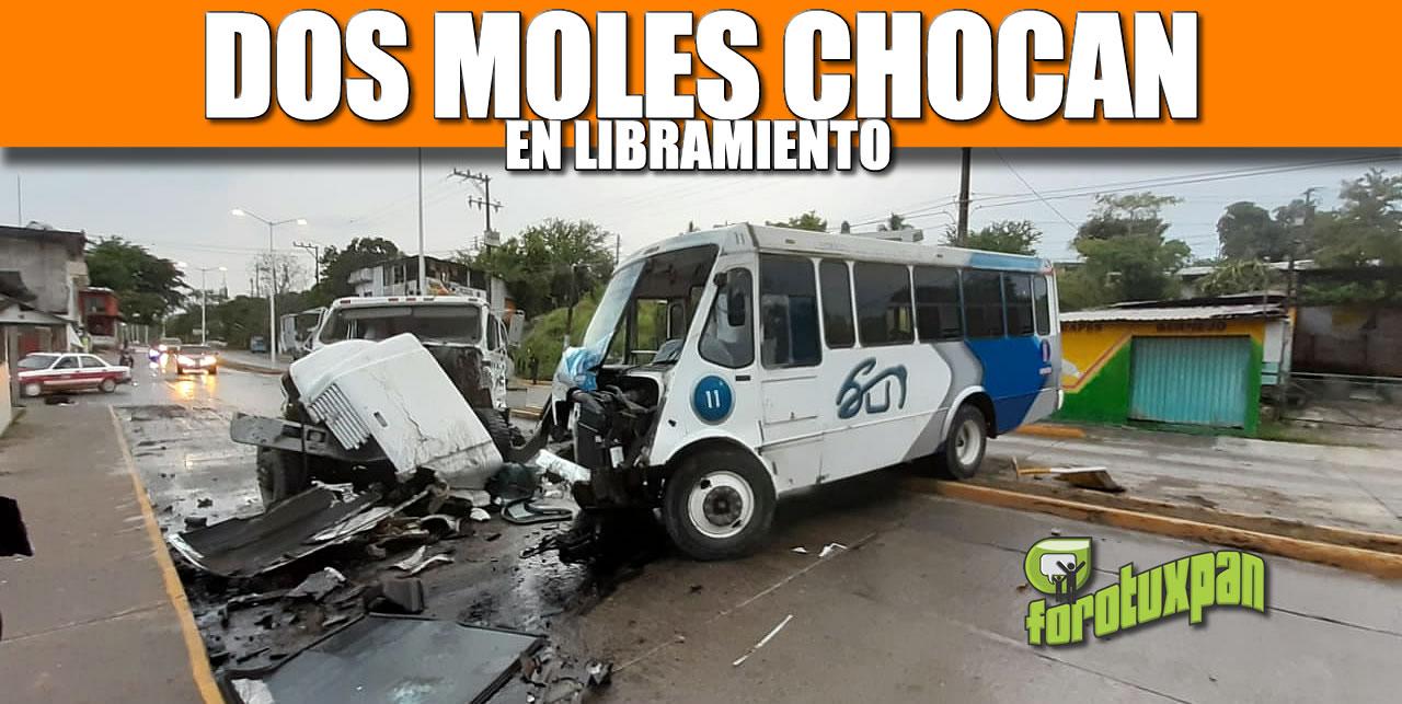 DOS MOLES CHOCAN EN LIBRAMIENTO