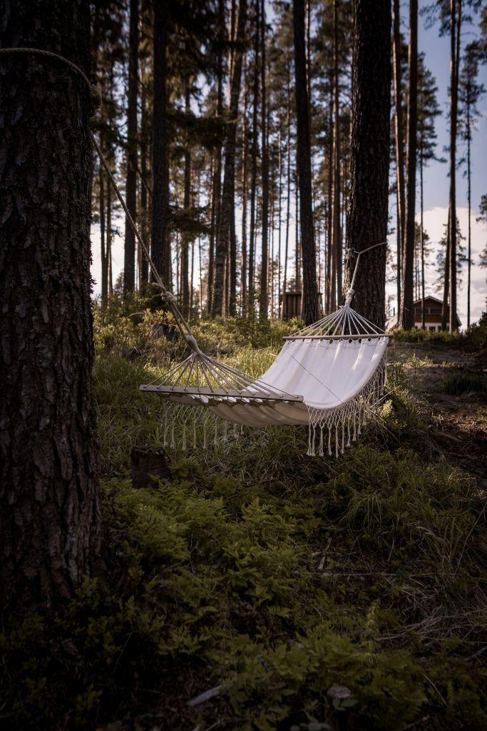Slappna av och njut av skogen från hängmattan