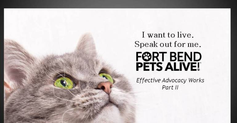 Effective Advocacy Works! (Part II) by Claudine Vass - Fort