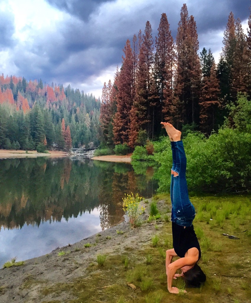 headstand-sequoia-forteebello