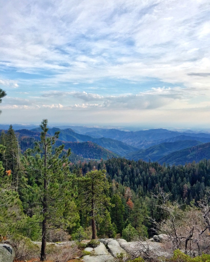 sequoianationalpark-forteebello