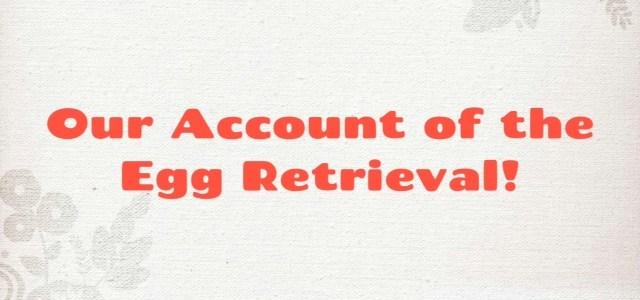 IVF: Phase Three {Egg Retrieval}
