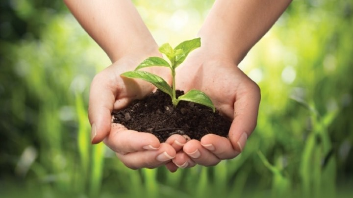 Organic-Farming-2-0a2fc8a8