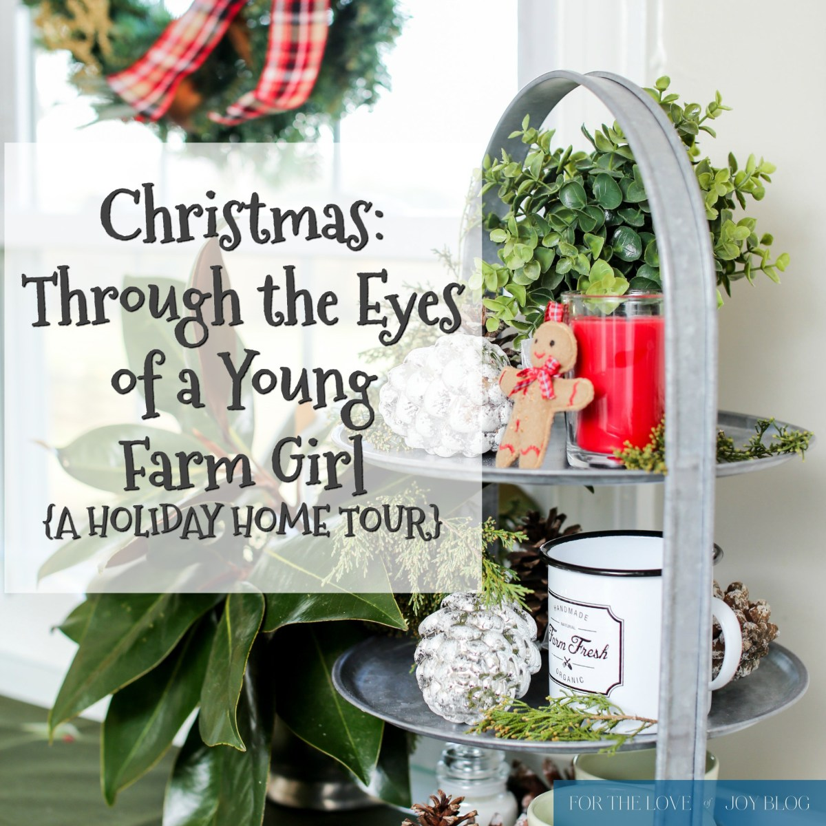 Christmas: Through the Eyes of a Young Farm Girl