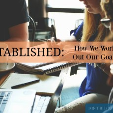 Established: How We Attain Our Goals