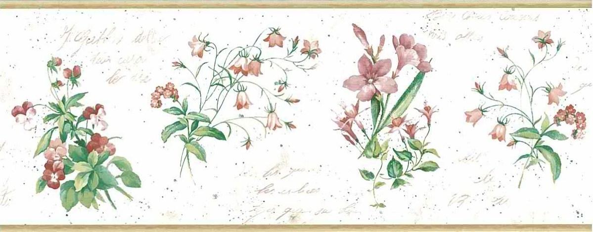 botanical script vintage wallpaper border, alternate view, French, UK, floral, pink, rose, green, cream, italics,anemones, fuchsia