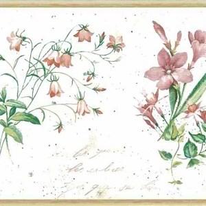 Botanical Script Vintage Wallpaper Border Floral IA798310 FREE Ship