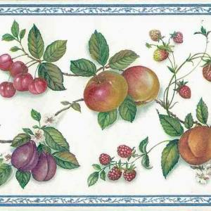 Kitchen Wallpaper Border Fruit Plums Grapes Green Red FREE Ship