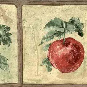 Fruit Vintage Wallpaper Border Kitchen Apples CL91357B FREE Ship