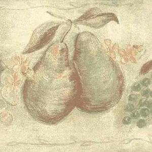 Orange Green Fruit Vintage Wallpaper Border Kitchen TE9239-B FREE Ship