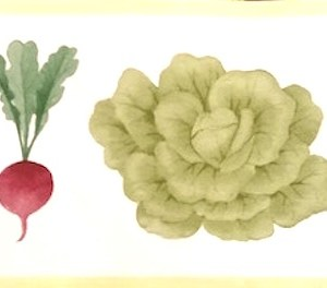 Waverly Vegetable Vintage Border Kitchen Lettuce 576103 FREE Ship