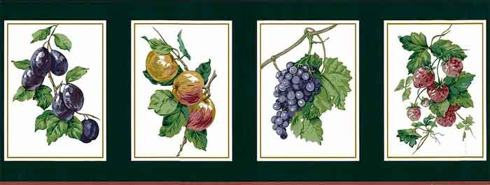 Green Fruit vintage Wallpaper Border, white, gold edging, plums, grapes, putple