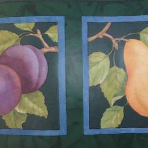 Vintage Green Framed Fruit Wallpaper Border Kitchen CTC263B FREE Ship