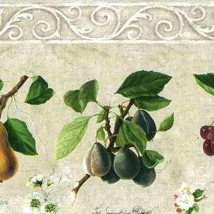 Cream Fruit Botanical Wallpaper Border Kitchen Vintage JD1071B FREE Ship