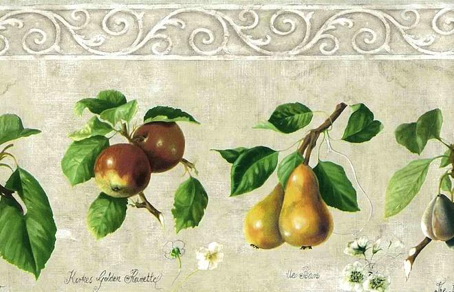 Cream Fruit Wallpaper Border with Cherries, Apples, & Pears