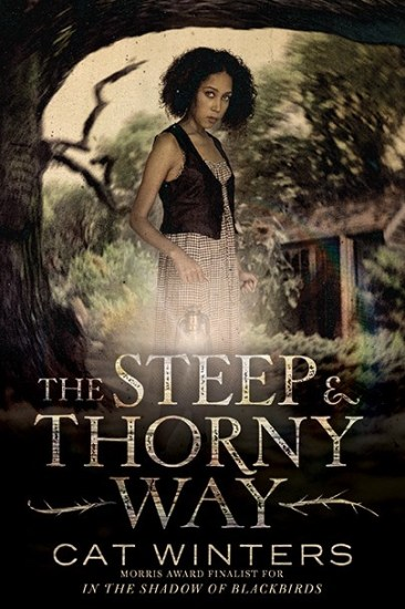 Book Review – The Steep & Thorny Way by Cat Winters