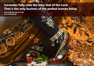 Quotes-by-Srila-Prabhupada-on-Only-Business-of-The-Perfect-Human-Being