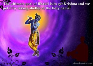 Quotes-by-Bhakti-Charu-Swami-on-Getting-Krishna