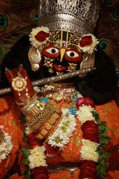 Radha Gopinath, Jaipur