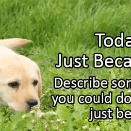 Writing Prompt: Just Because Day