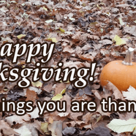 Writing Prompt: Thanksgiving