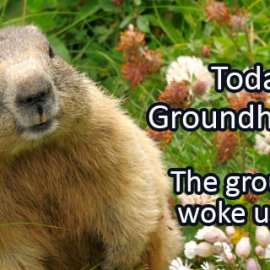 Writing Prompt for February 2: Groundhog!