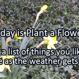 Writing Prompt for March 11: Plant a Flower