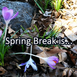 Writing Prompt for March 25: Spring Break