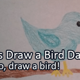 Writing Prompt for April 8: Draw a Bird