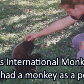 Writing Prompt for December 14: Monkeys!