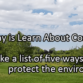 Writing Prompt for May 29: Composting