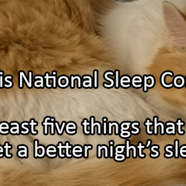Writing Prompt for November 7: Sleep Comfort Month