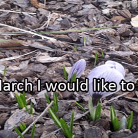 Writing Prompt for March 2: Try