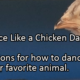 Writing Prompt for May 14: Dance Like a Chicken
